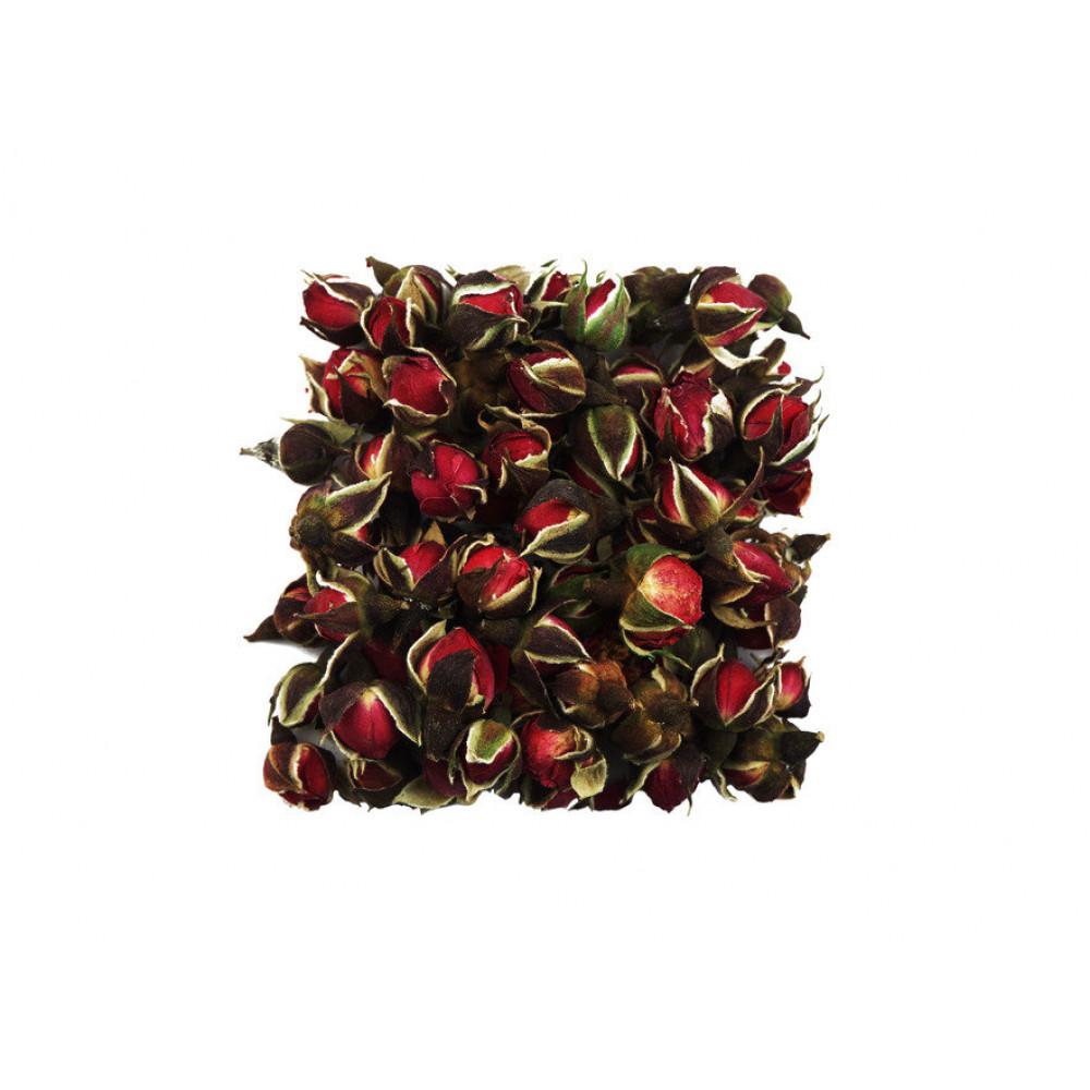 Роза юньнаньская (бутоны)
